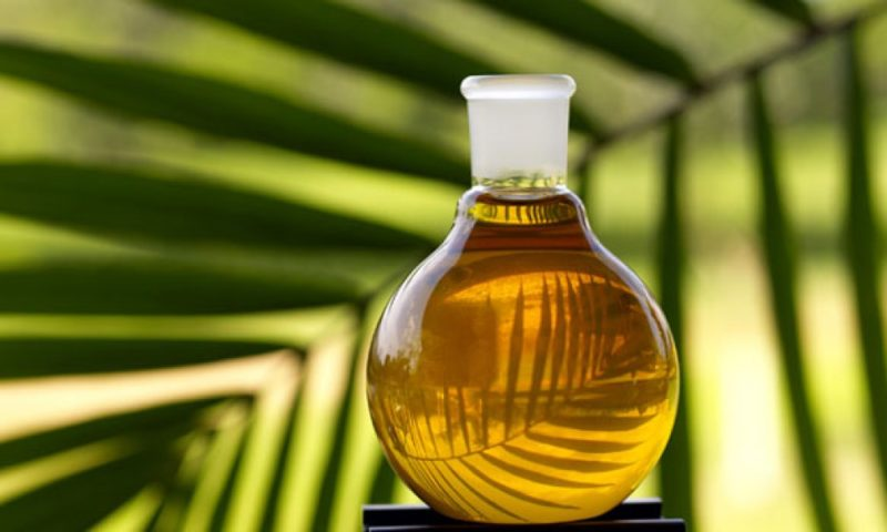 European vegoils-Palm oil steady, Malaysian market closed
