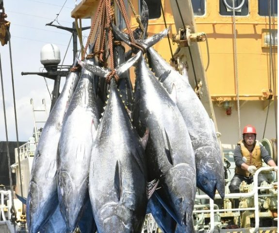 Japan's Pacific bluefin tuna fishing quota to remain unchanged