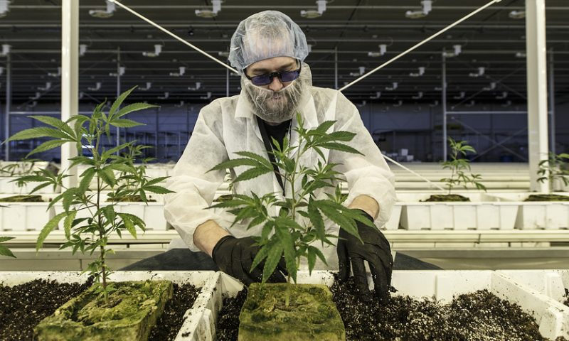Aurora Cannabis now has a $1 price target from two analysts