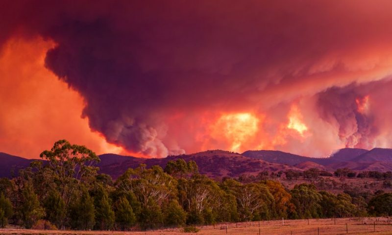 Australia fires: Canberra escapes worst as fires rage on