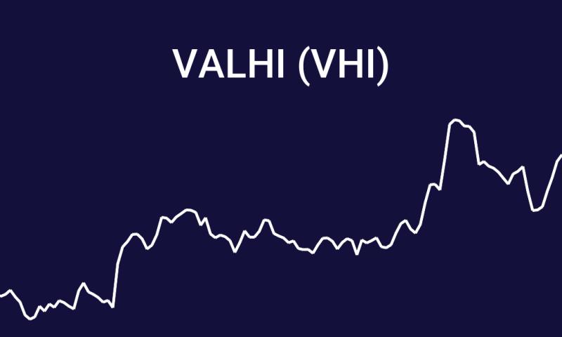 Valhi Inc. (VHI) Soars 1.04%