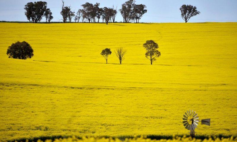 Australia Predicts Record Farm Production Despite Challenges